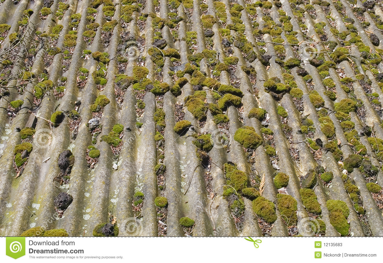 how to stop moss on roof