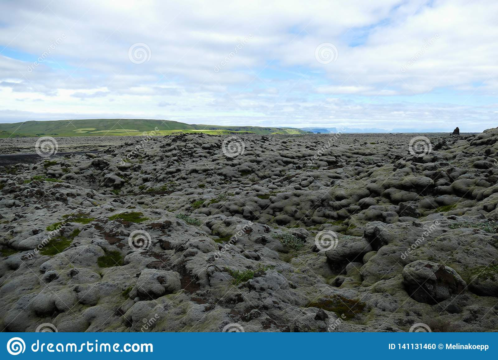 Moss landscape with stones covered in thick layers of moss, Iceland