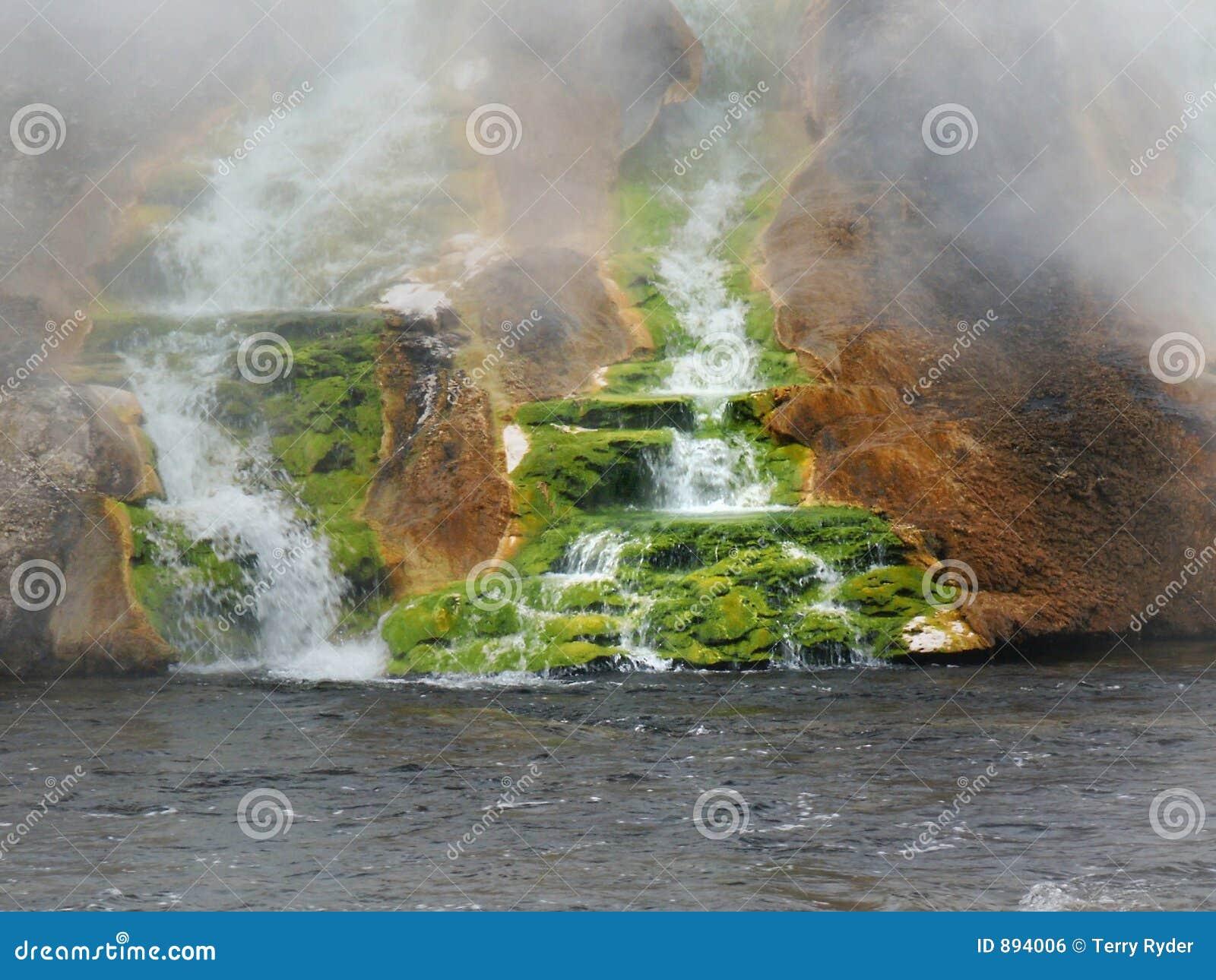 Moss termicznego falls zielone