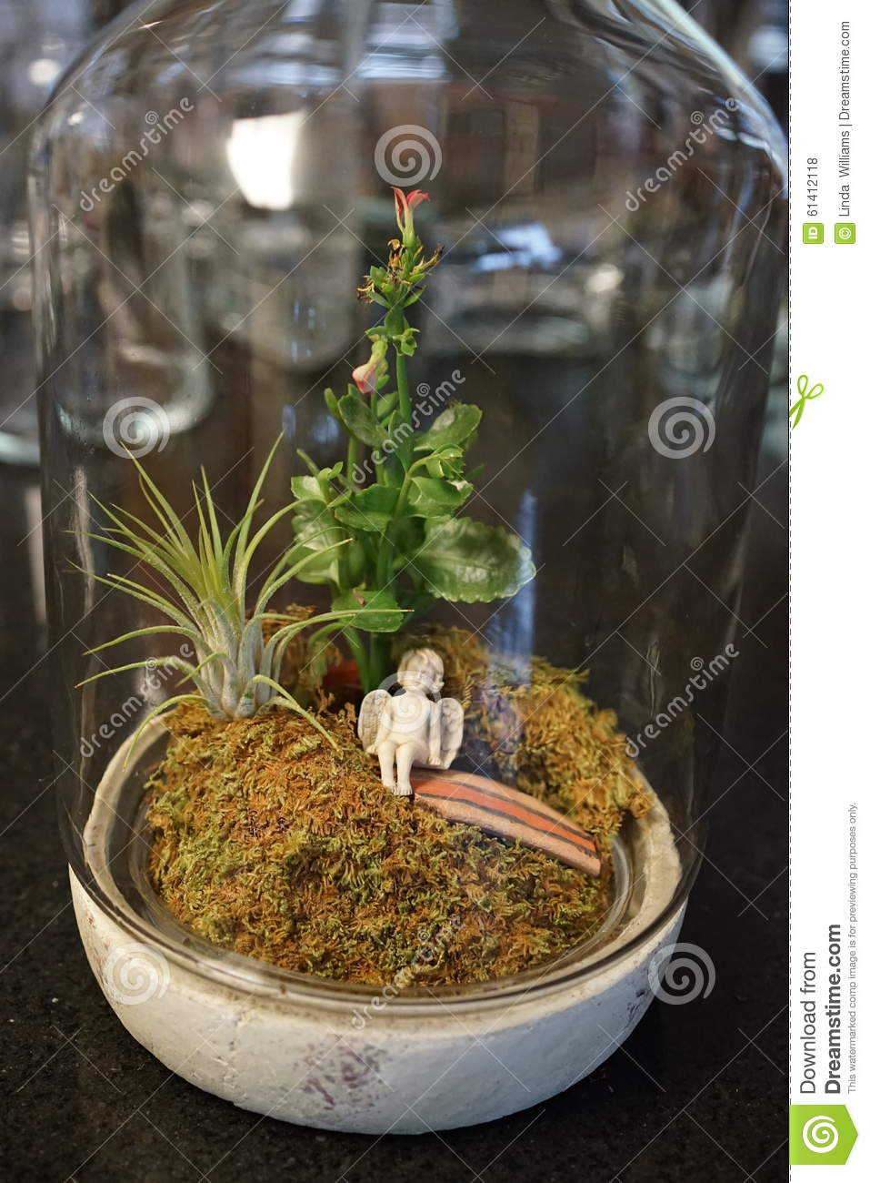 Moss Terrarium With Angel Vertical Stock Photo Image Of