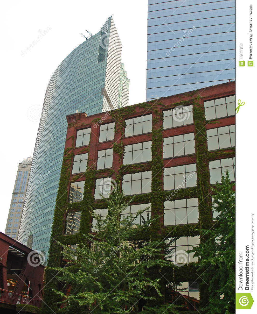 Mossy brick building in front of sleek towers royalty free for Moss building design