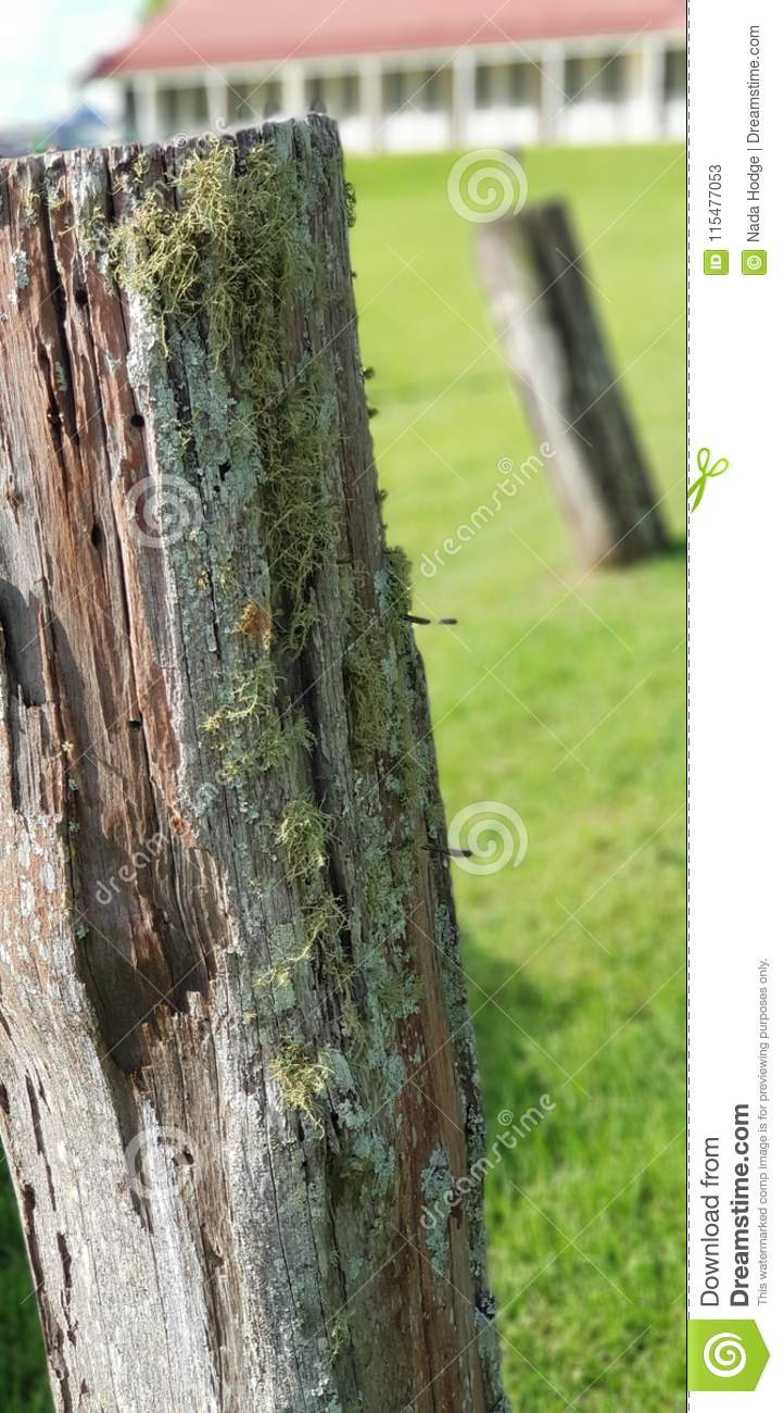 Old Farm Fence Post Stock Image Image Of Post Farm 115477053