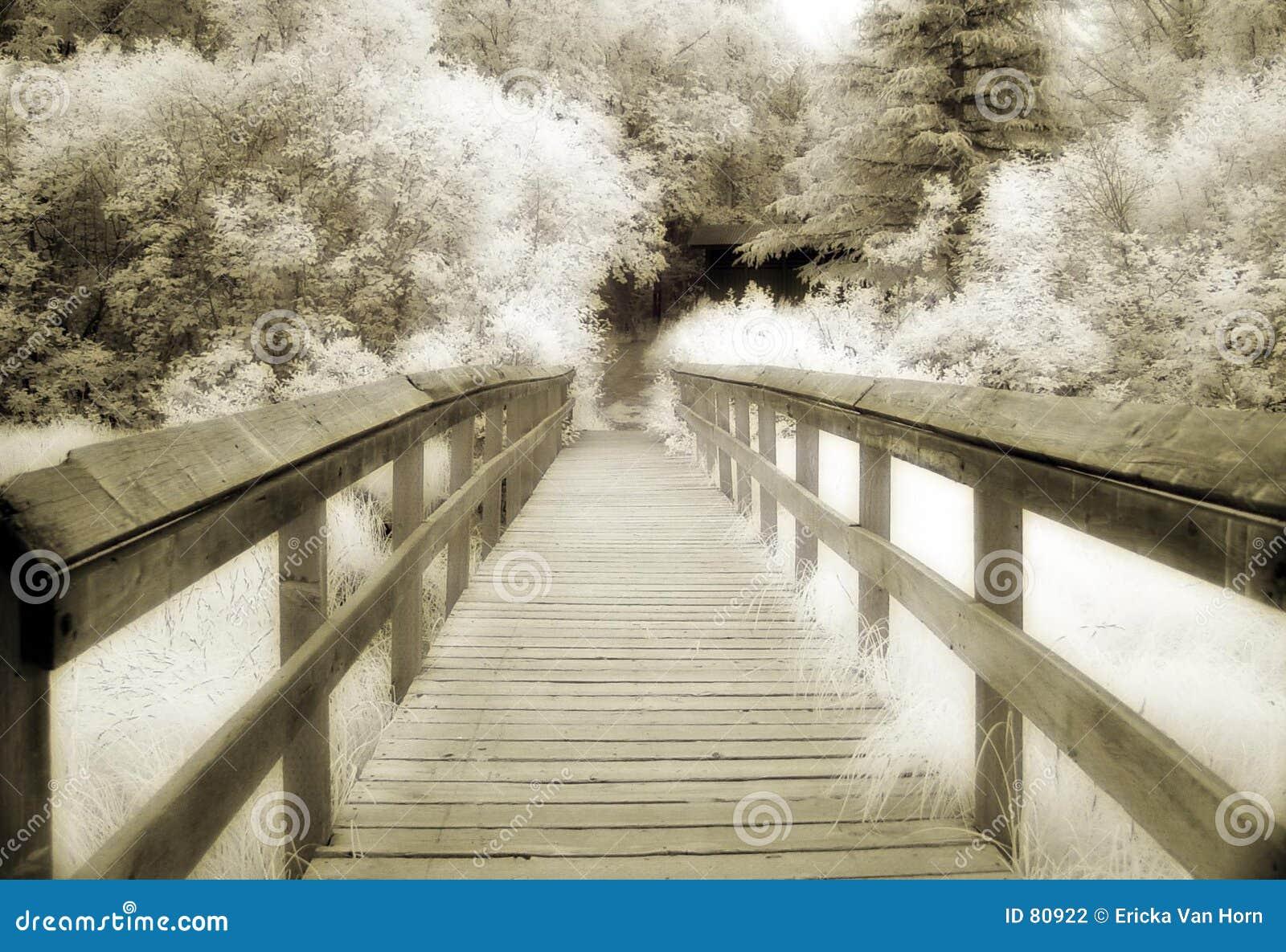 Most sepiowy