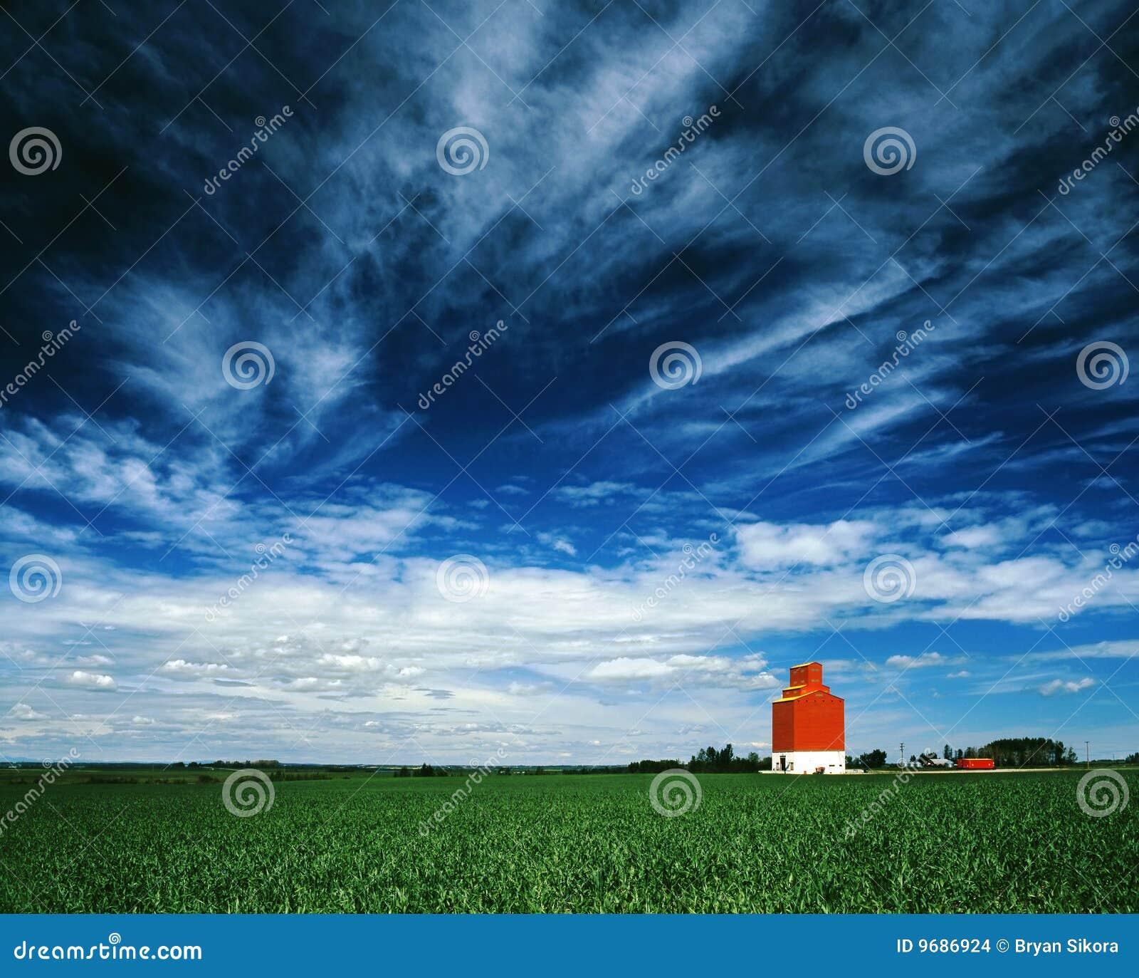 Mot den stora blåa skyen för hisskornorange
