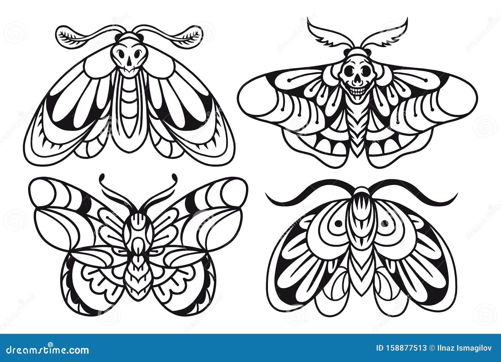 Tattoo Illustration Tattoo Moth Drawing