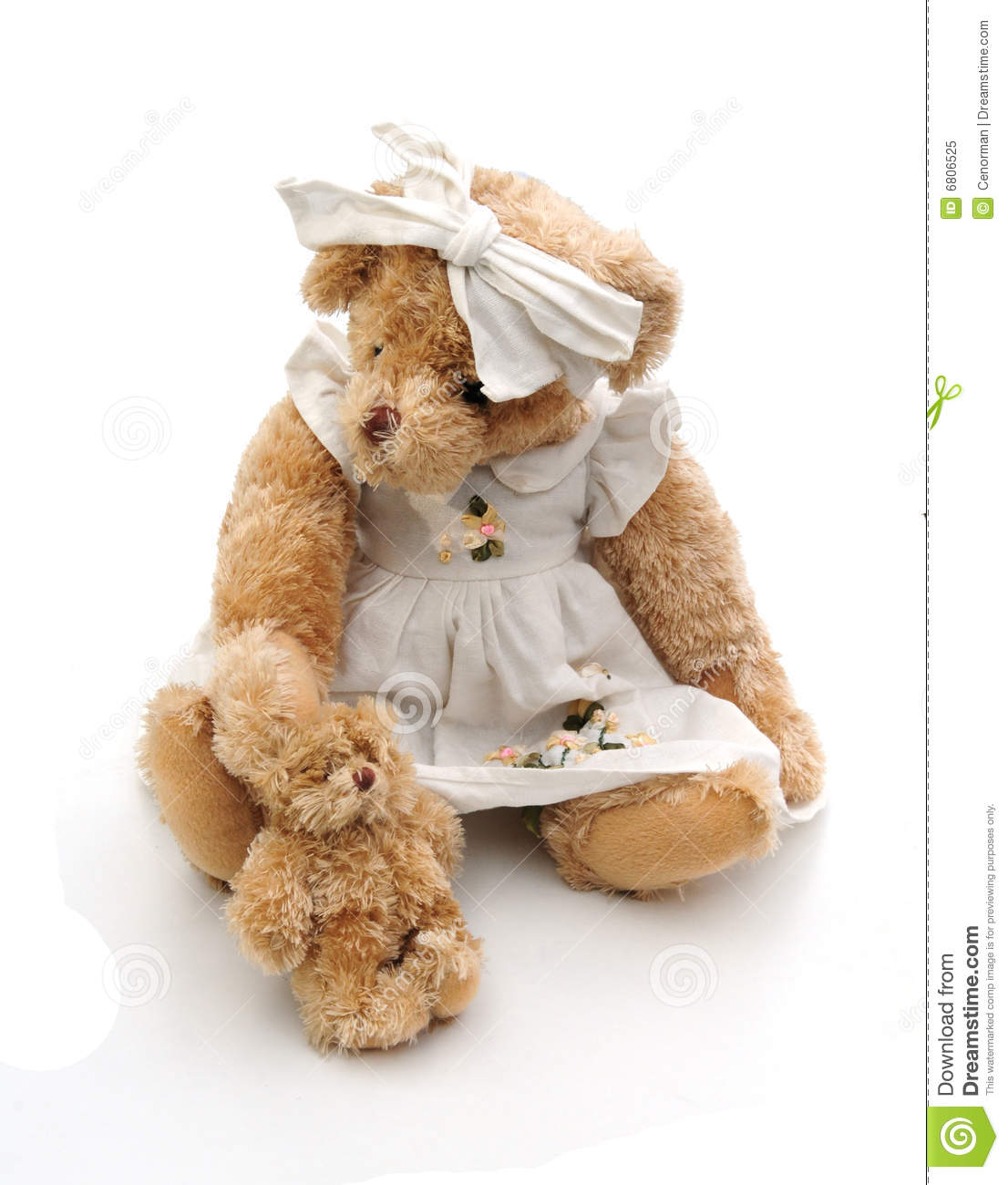 Mother And Baby Bear Royalty Free Stock Photo