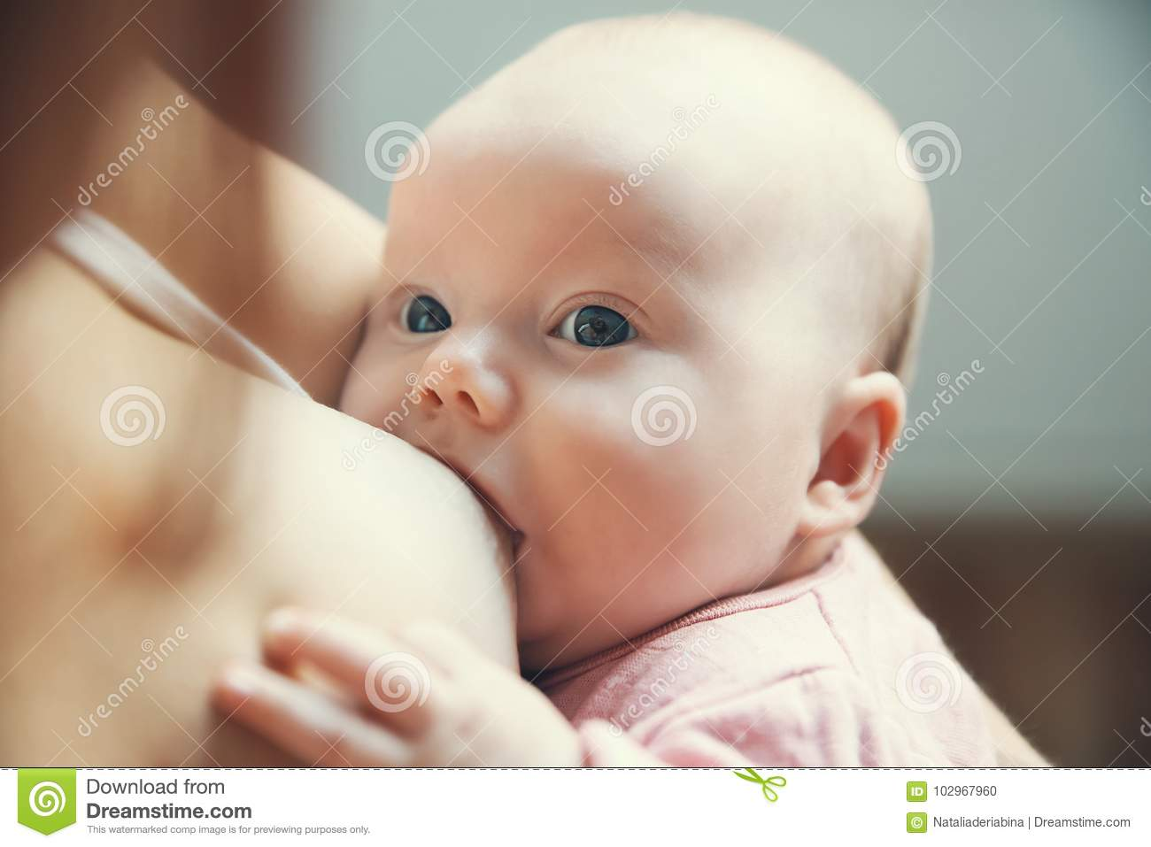 Download Mother Breastfeeding Newborn Baby Child Stock Photo - Image of looking, maternity: 102967960