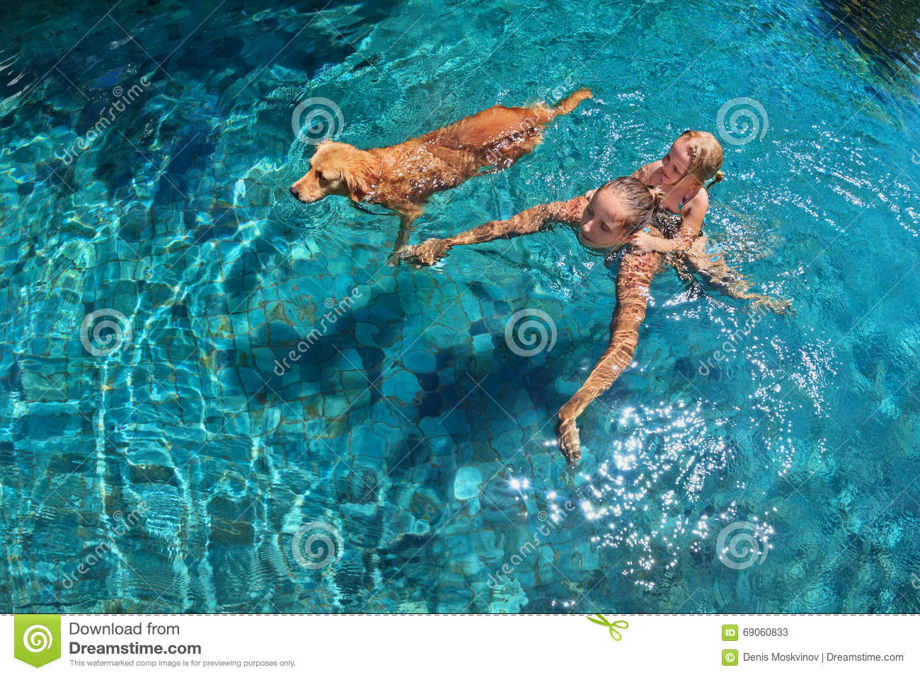 Mother with child on back swim with dog in pool stock image image of back happy 69060833 for How to train your dog to swim in the pool