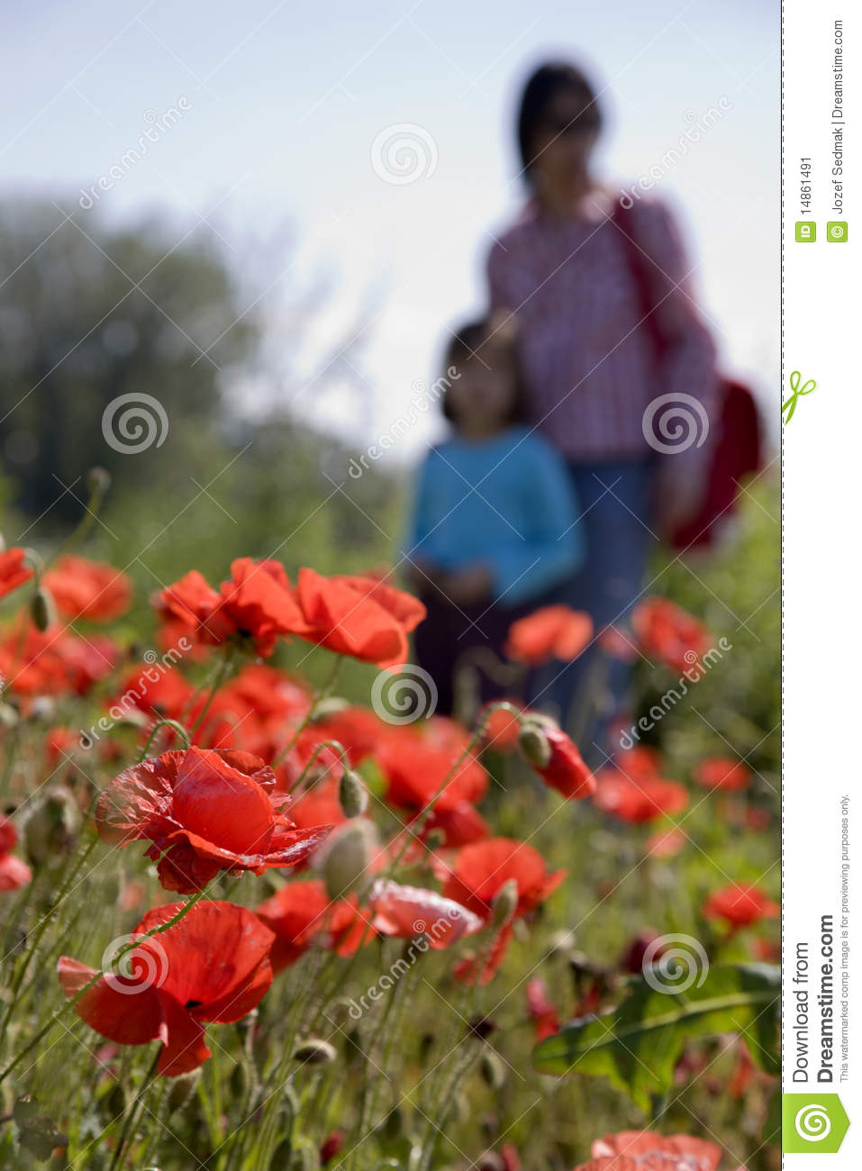Mother and child in the corn poppy