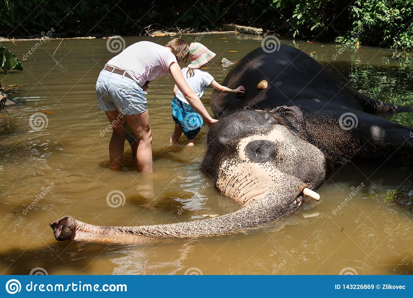 Mother with children caressing Asian elephant in captivity, chained, abused for attracting tourists