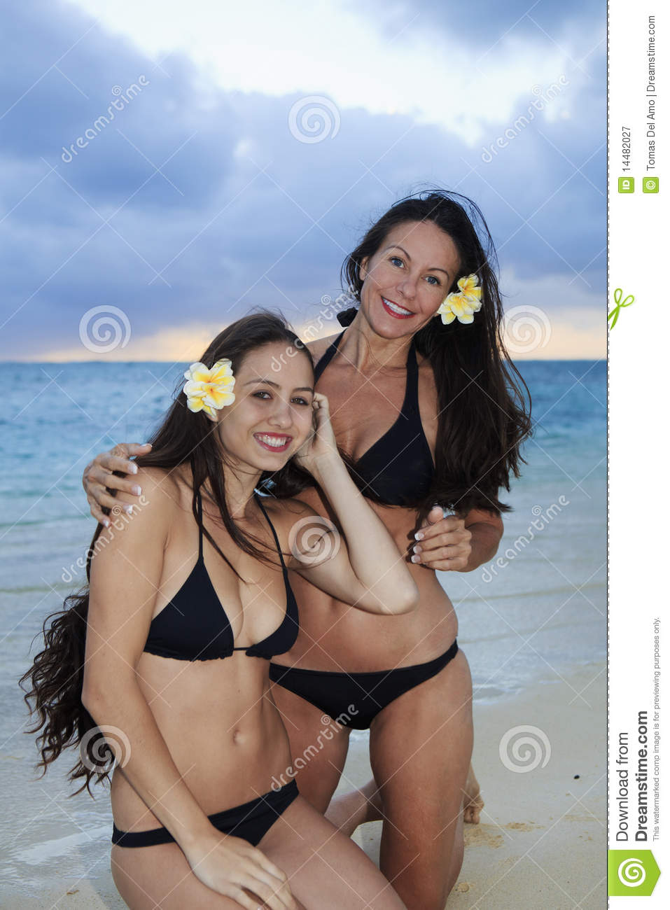 Frangipani spa flowers stock photo image 14654190 -  Mother And Daughter On The Beach Royalty Free Stock Photography