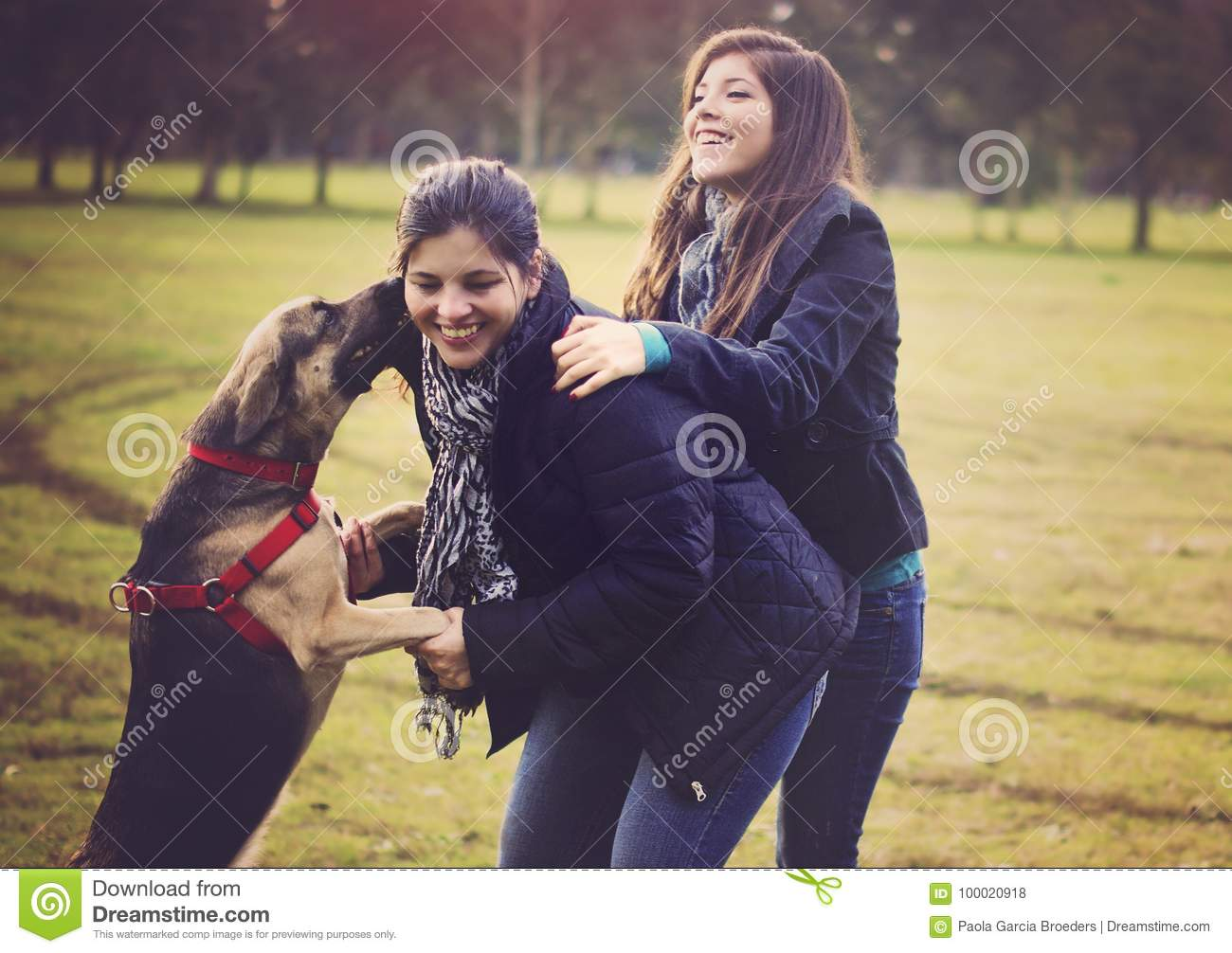 Mother And Daughter Pet A Dog Stock Photo - Image: 11578340 |Dog Mom And Daughter