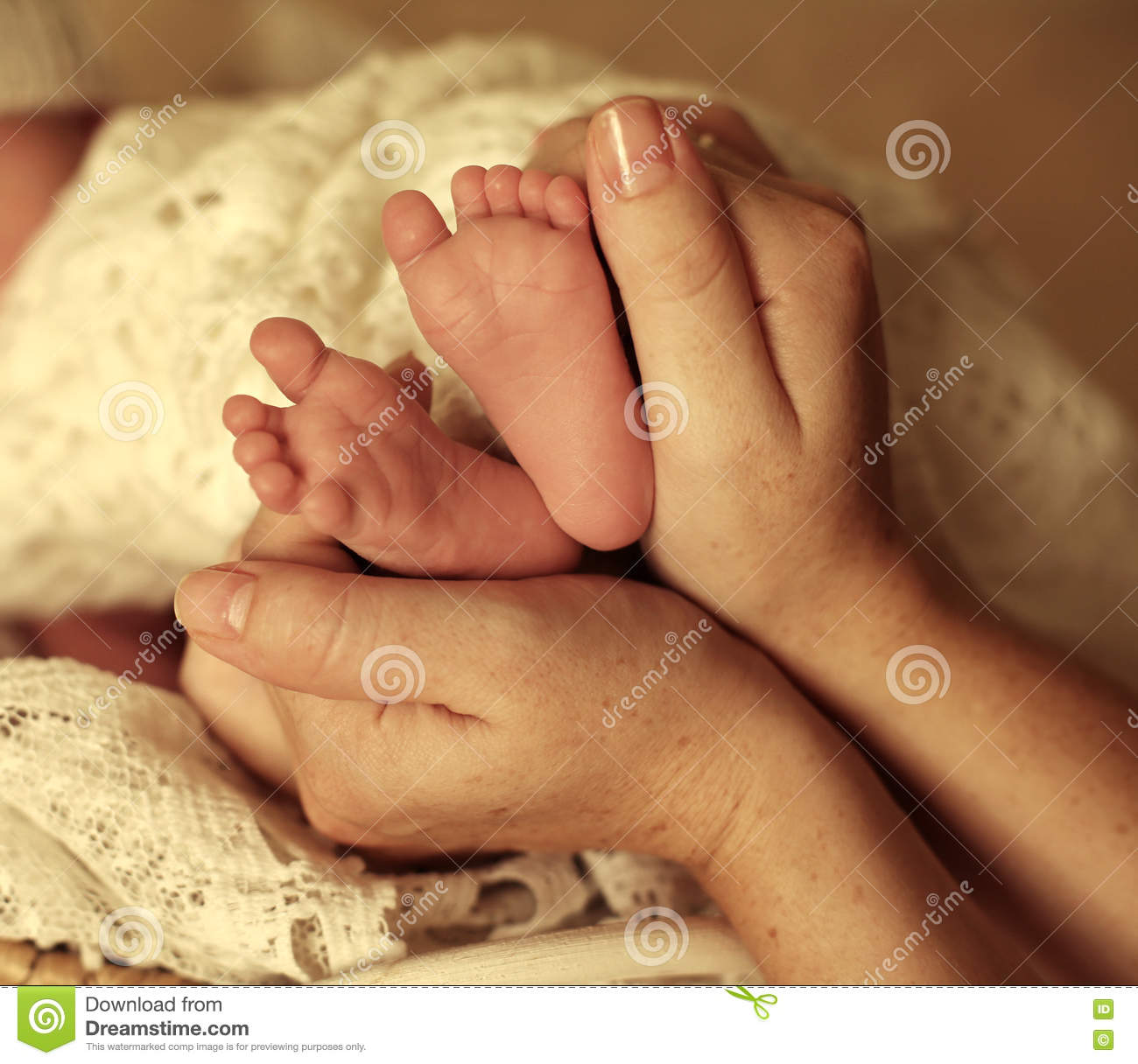150a72d1ac Studio photo of cute beautiful newborn baby girl sleeping under cozy blanket.  mom holding her feets in hands