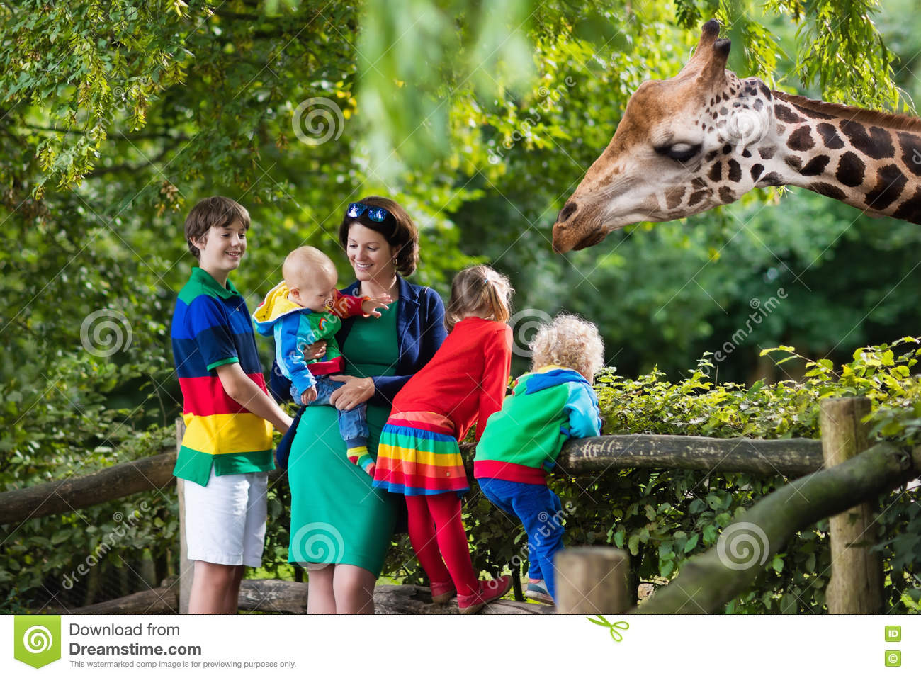 Mother and kids feeding giraffe at the zoo