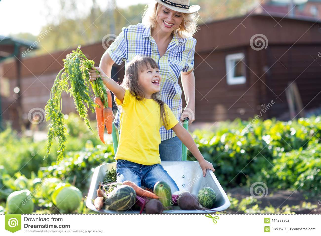 Mother and son playing baseball in yard Stock Photo - Alamy