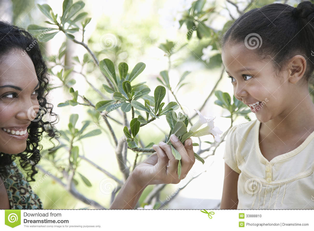 Download Mother Showing Flower Plant To Daughter Stock Photo ...