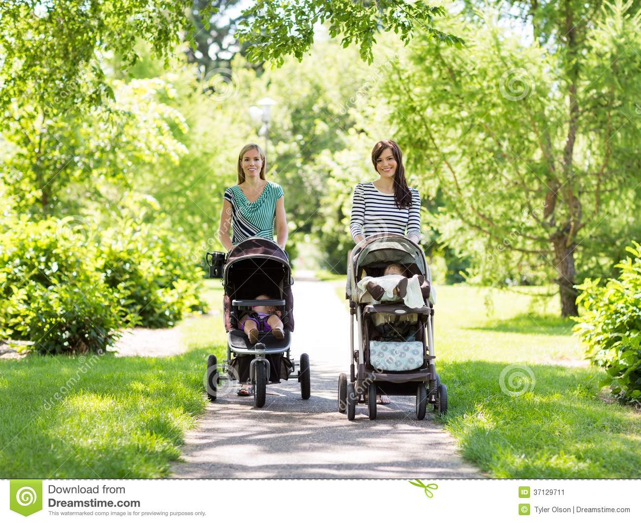 Mothers With Baby Strollers Walking In Park Stock Image