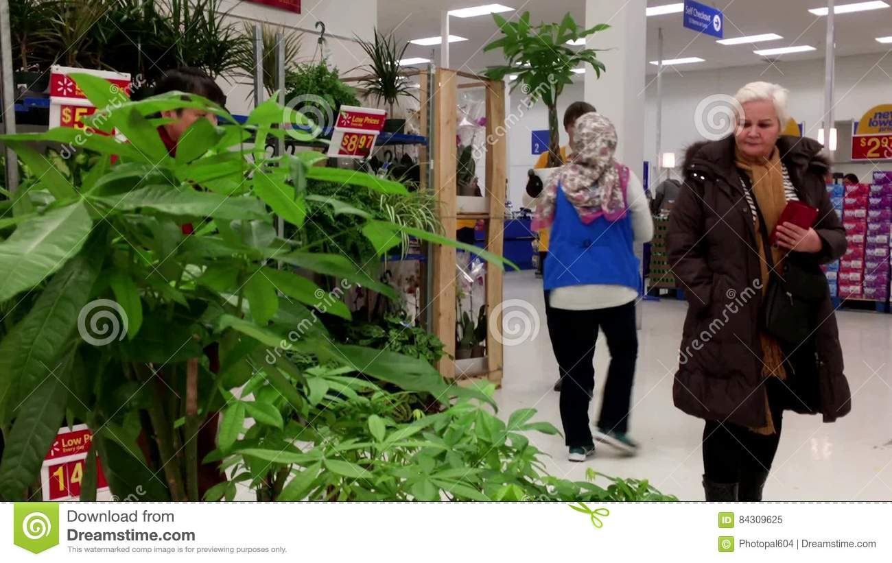 Motion of people buying plants and helping by clerk