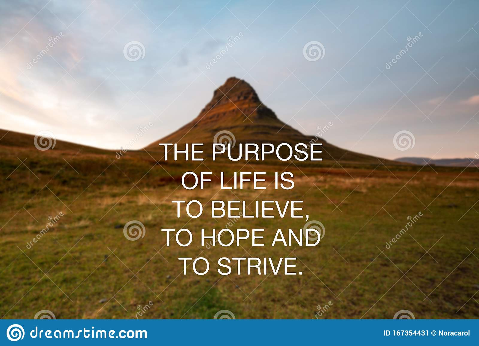 Inspirational Quotes The Purpose Of Life Is To Believe To Hope And To Strive Stock Image Image Of Quotes Hope 167354431