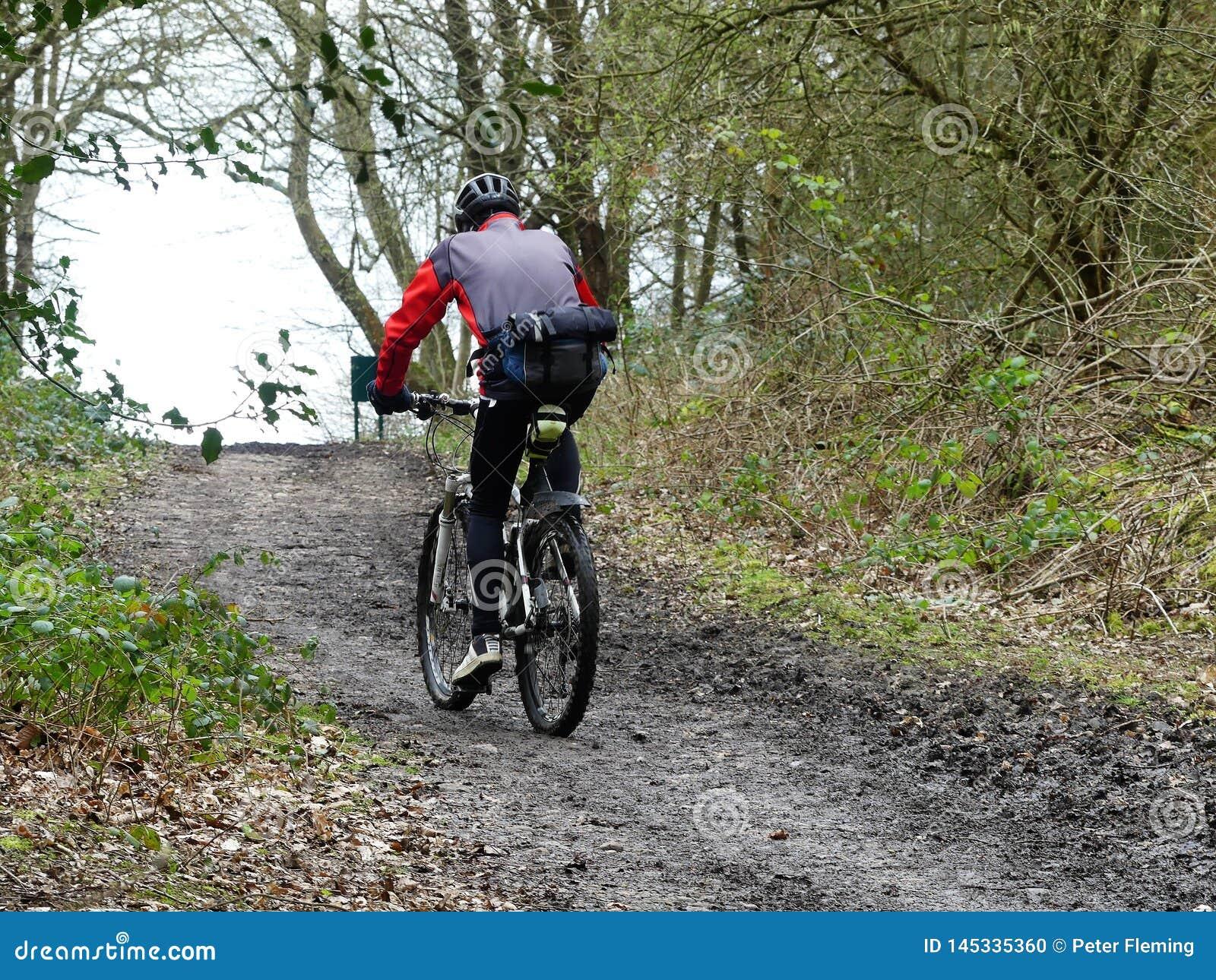 Motociclista da montanha no trajeto da floresta