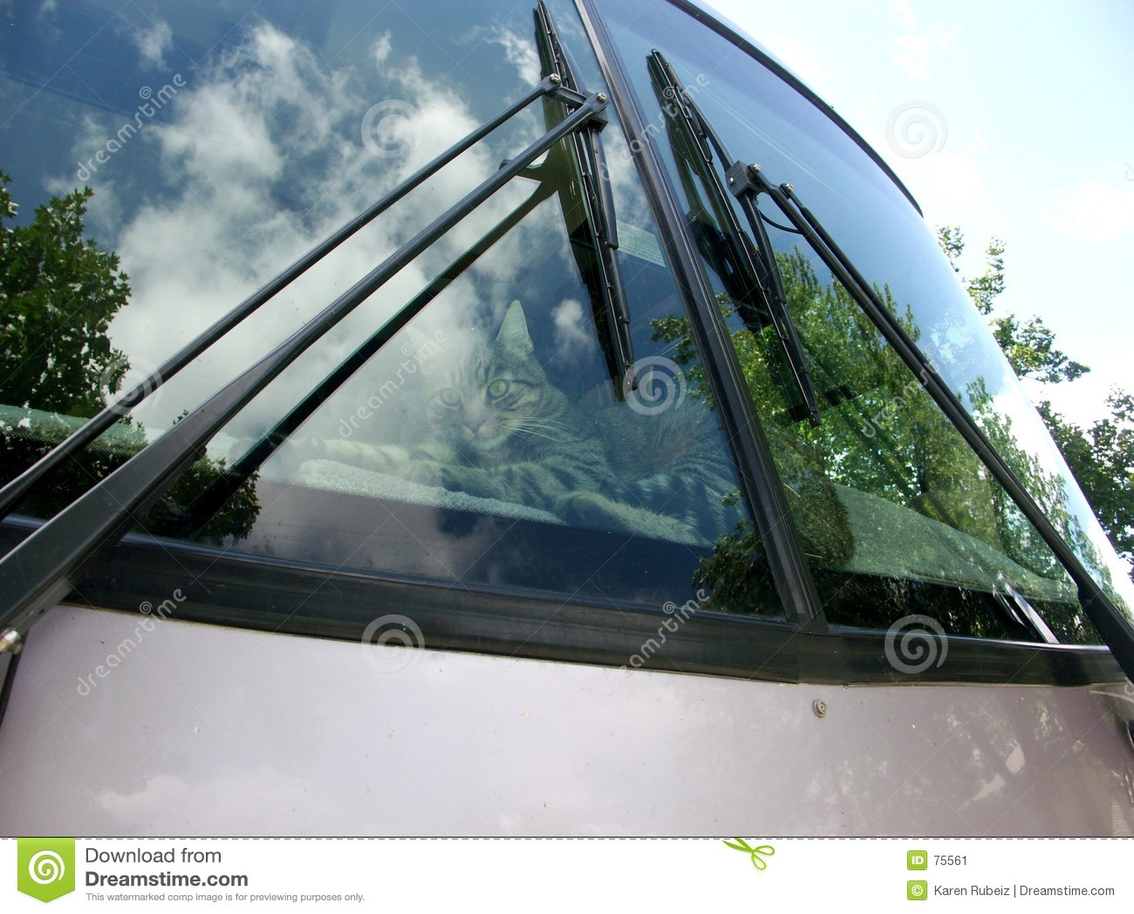 Motor home windshield
