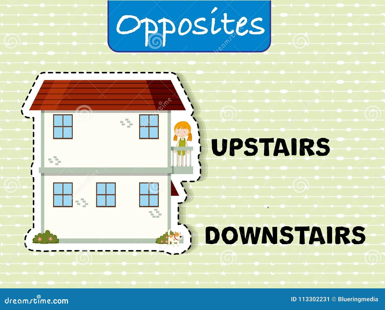 Motsatta ord för uppför trappan och bottenvåning