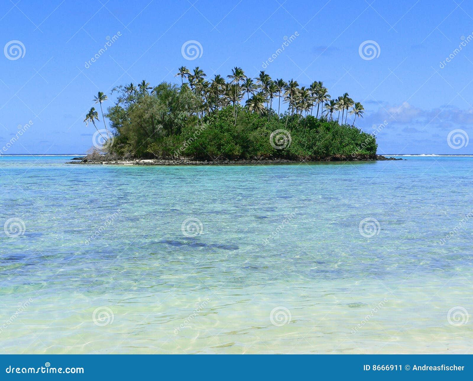 Motu un d île tropical