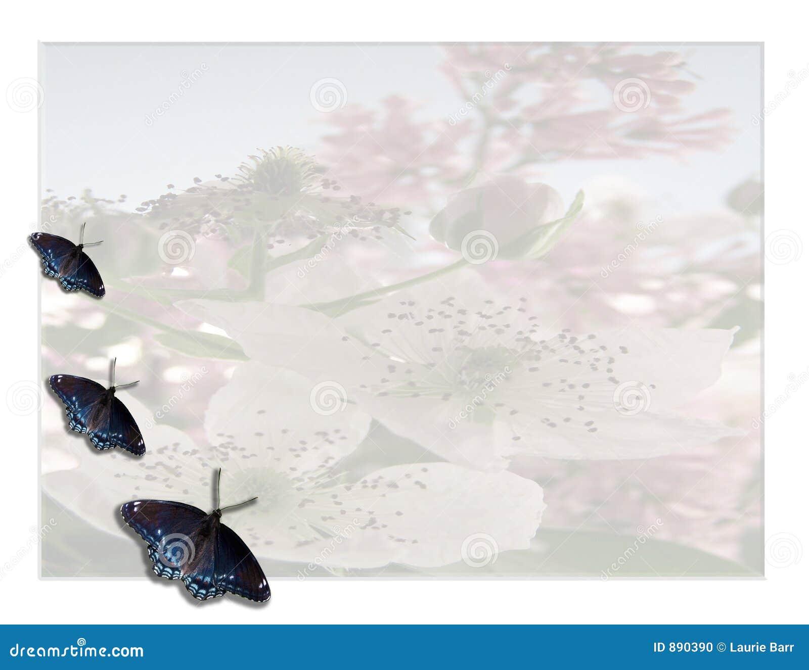 Motyl kwiecisty