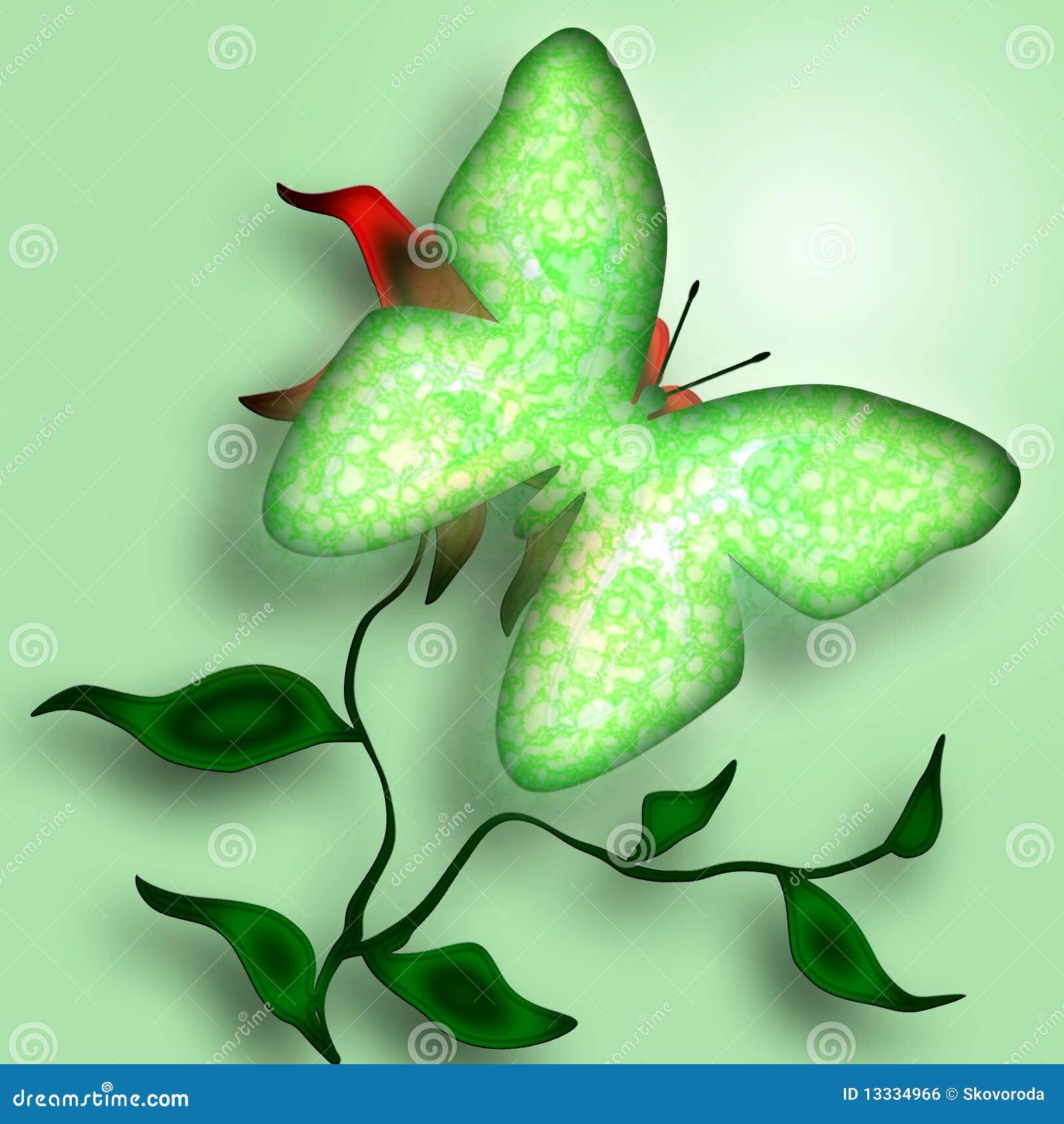 Motylia dekoracyjna zieleń
