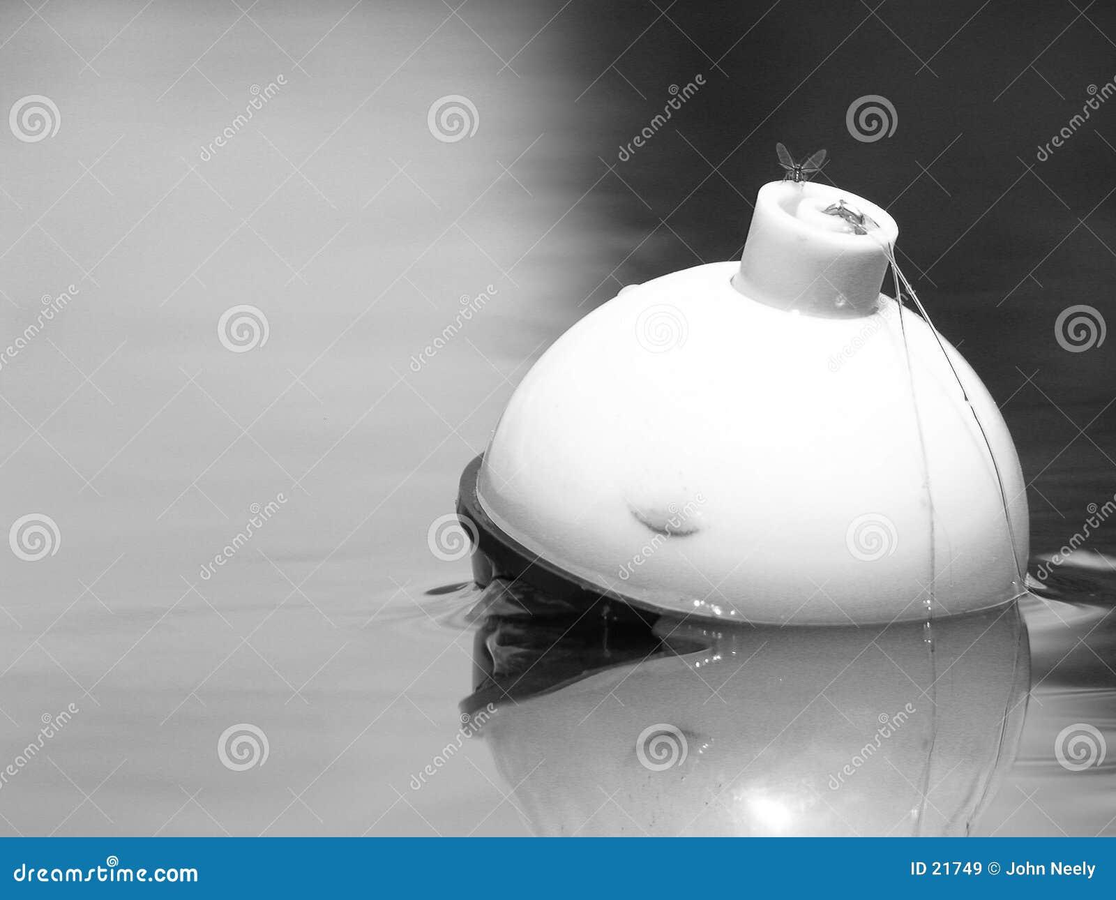 Mouche sur le bobber de pêche