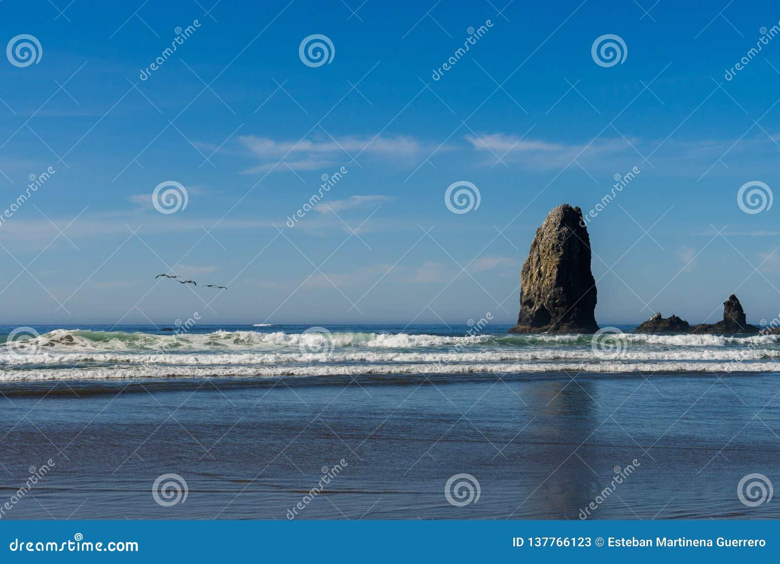 Mouettes au-dessus de l océan vers les roches verticales qui se tiennent en plage de canon, Orégon, Etats-Unis