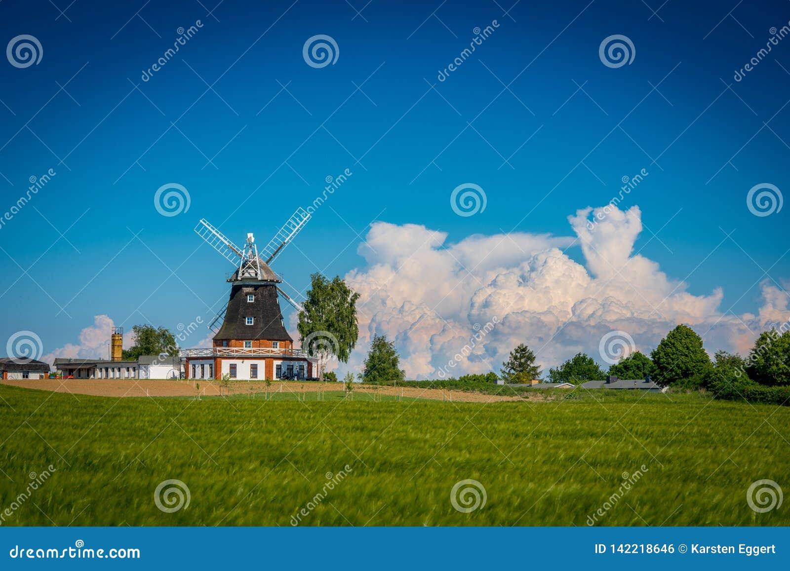 Moulin à vent au printemps derrière un champ de grain