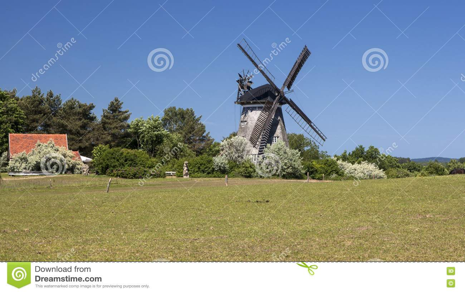 Moulin à vent dans le benz sur l île d Usedom