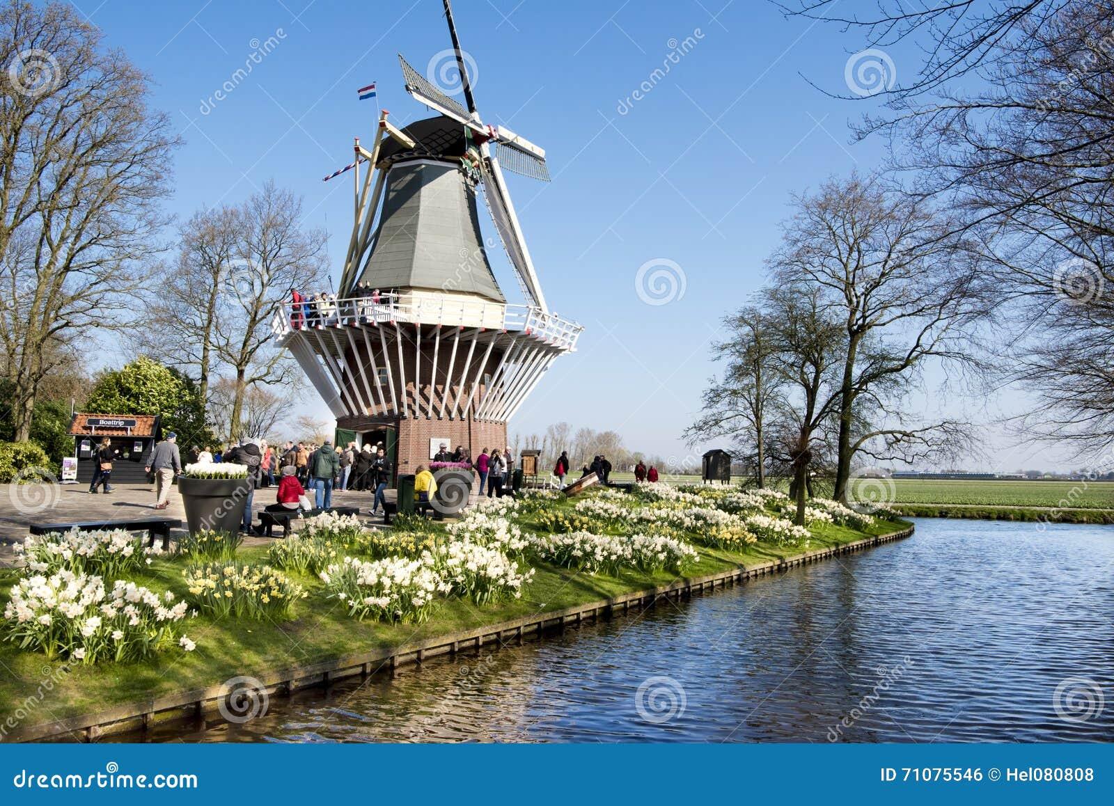 Moulin à vent dans le jardin de Keukenhof