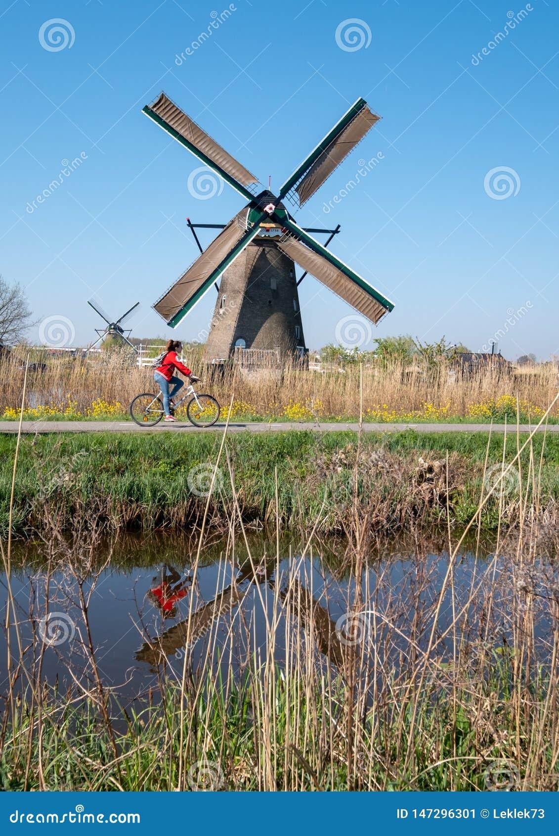 Moulin à vent historique avec le cycliste faisant un cycle dans l avant, chez Kinderdijk, la Hollande, Pays-Bas, un site de patri