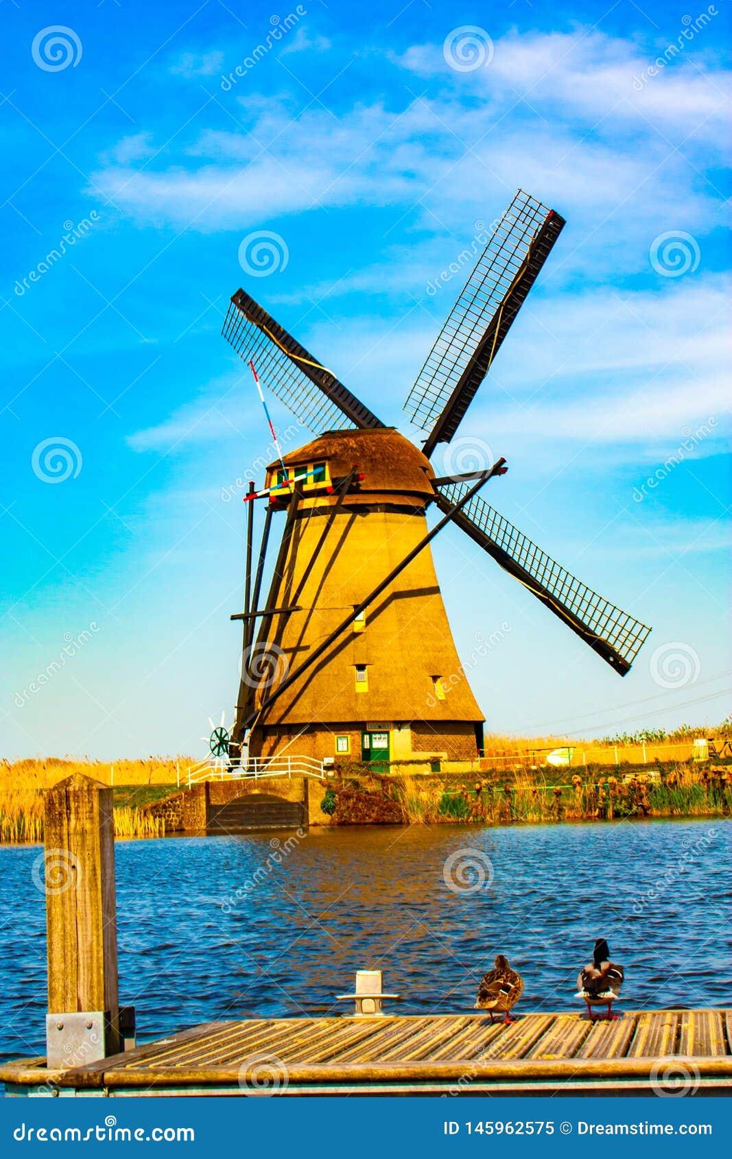 Moulin ? vent chez Kinderdijk - beau jour ensoleill?