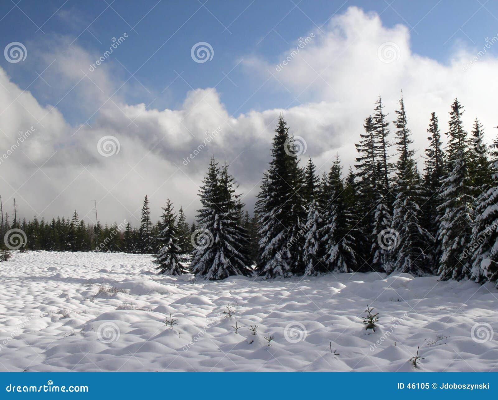 Mount łąkowa