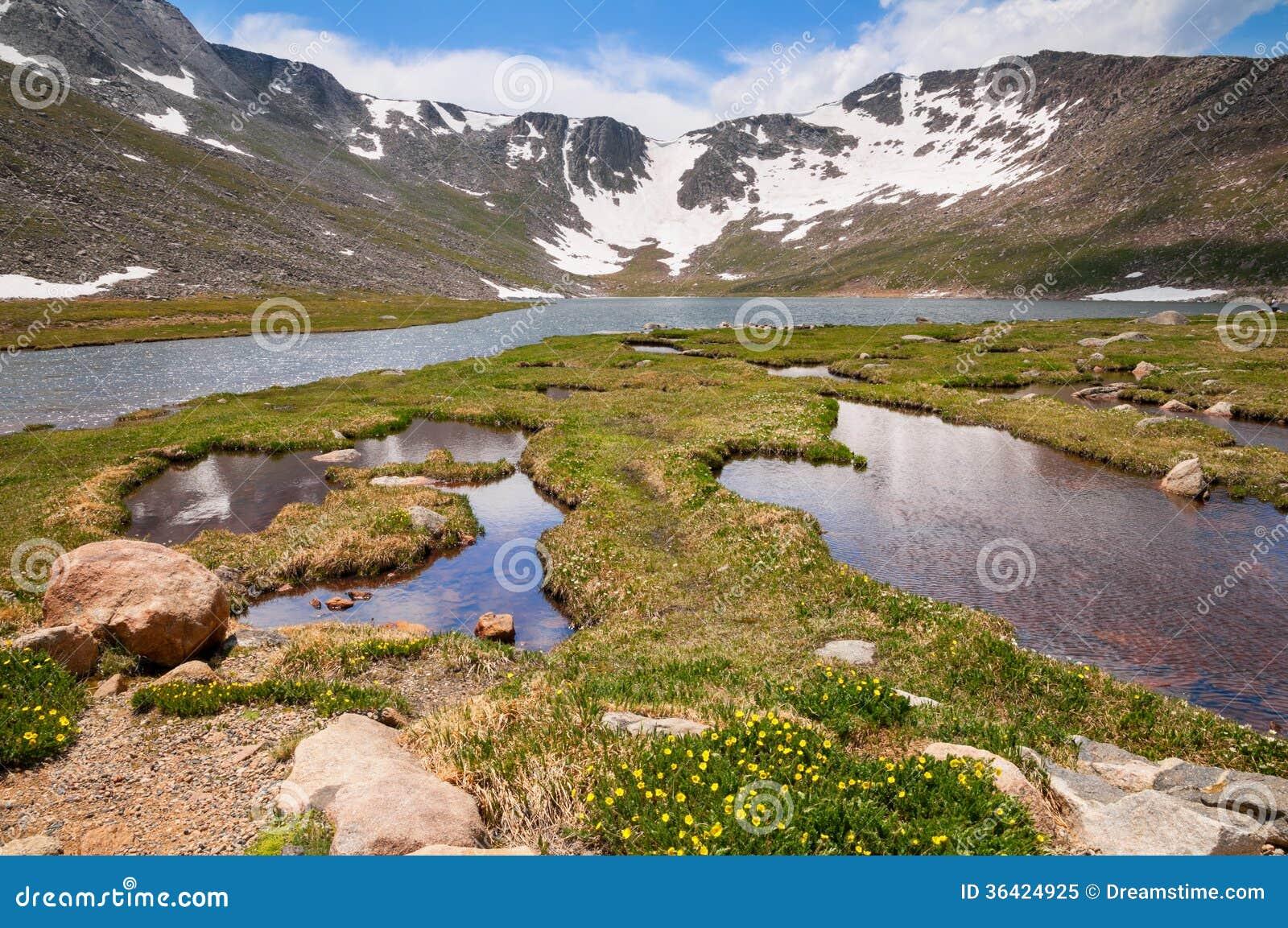 Mount Evans Tundra