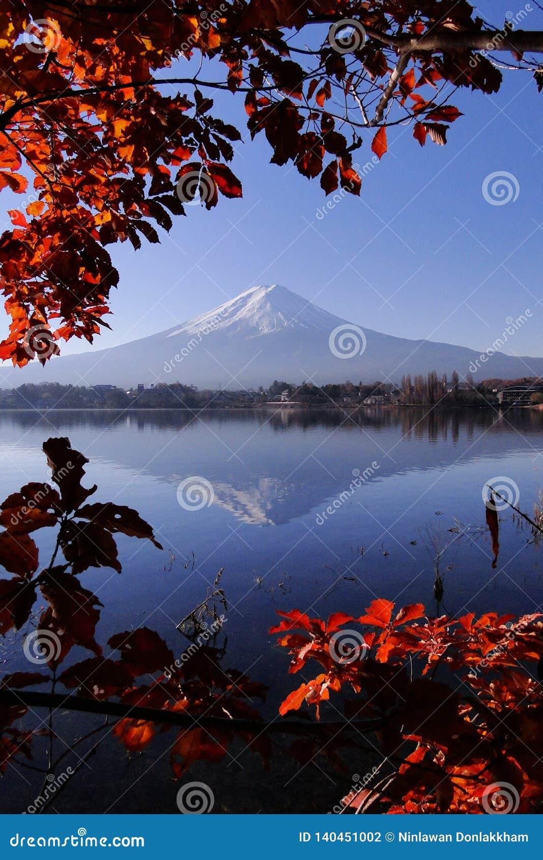 Mount Fuji japanskt iconic i höst