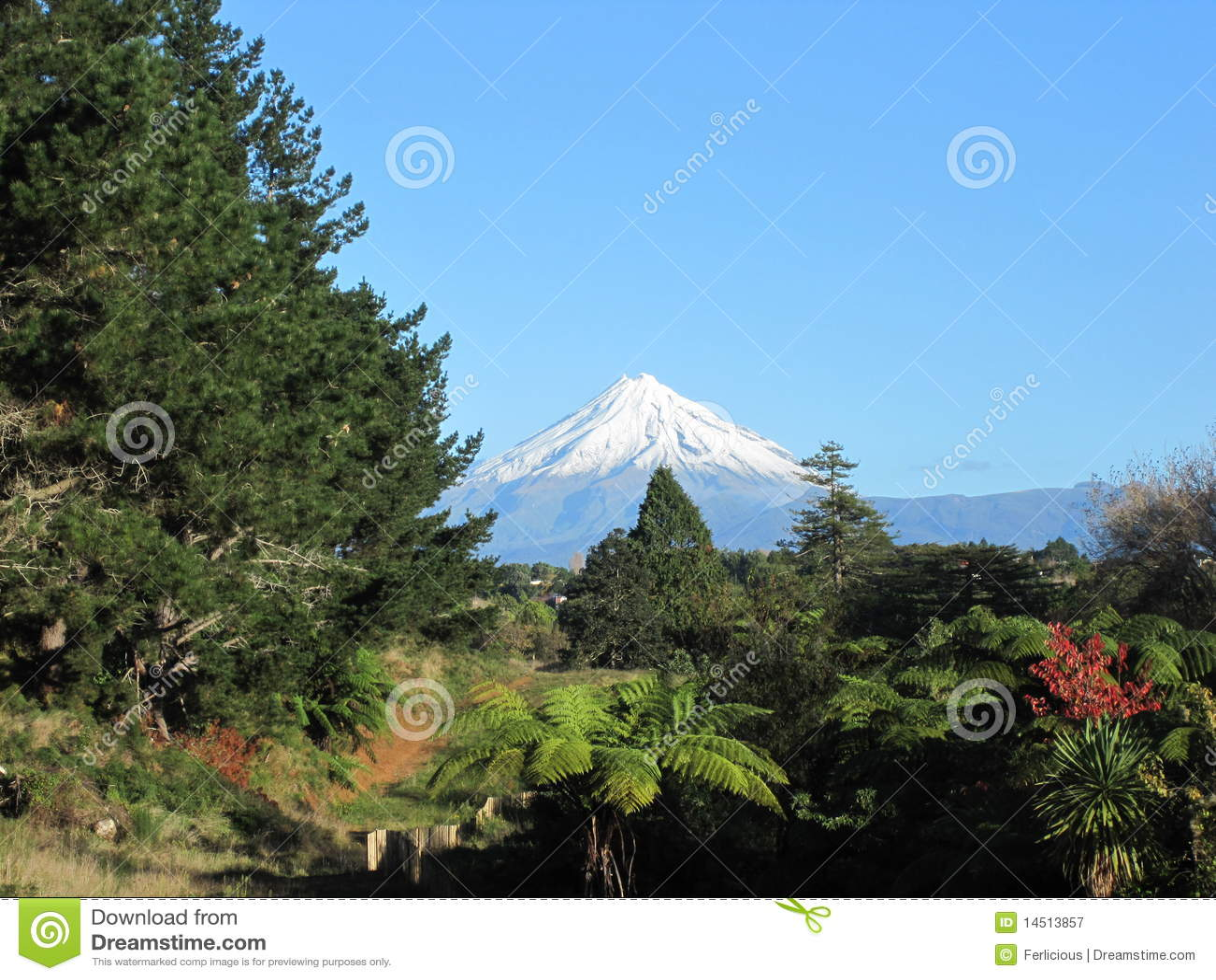 Mount Taranaki New Zealand  City pictures : Mount Taranaki, New Zealand Royalty Free Stock Photography Image ...