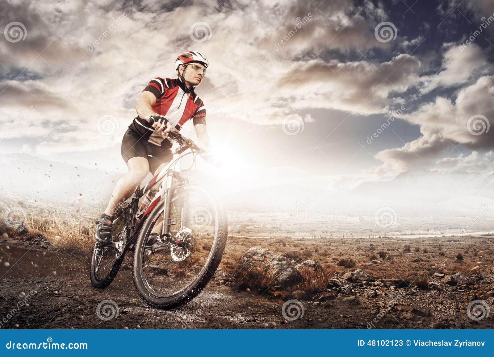 Mountain Bike Cyclist Riding Single Track Stock Image