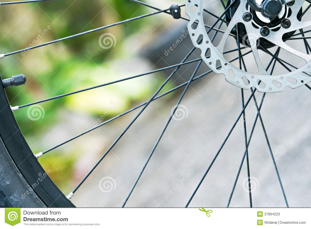 Cycle Shop Business Plan