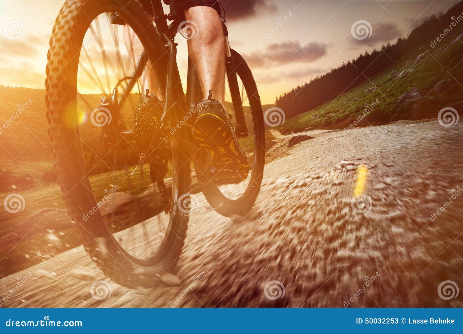 Download Mountain Bike stock image. Image of holidays, bicycle - 50032253