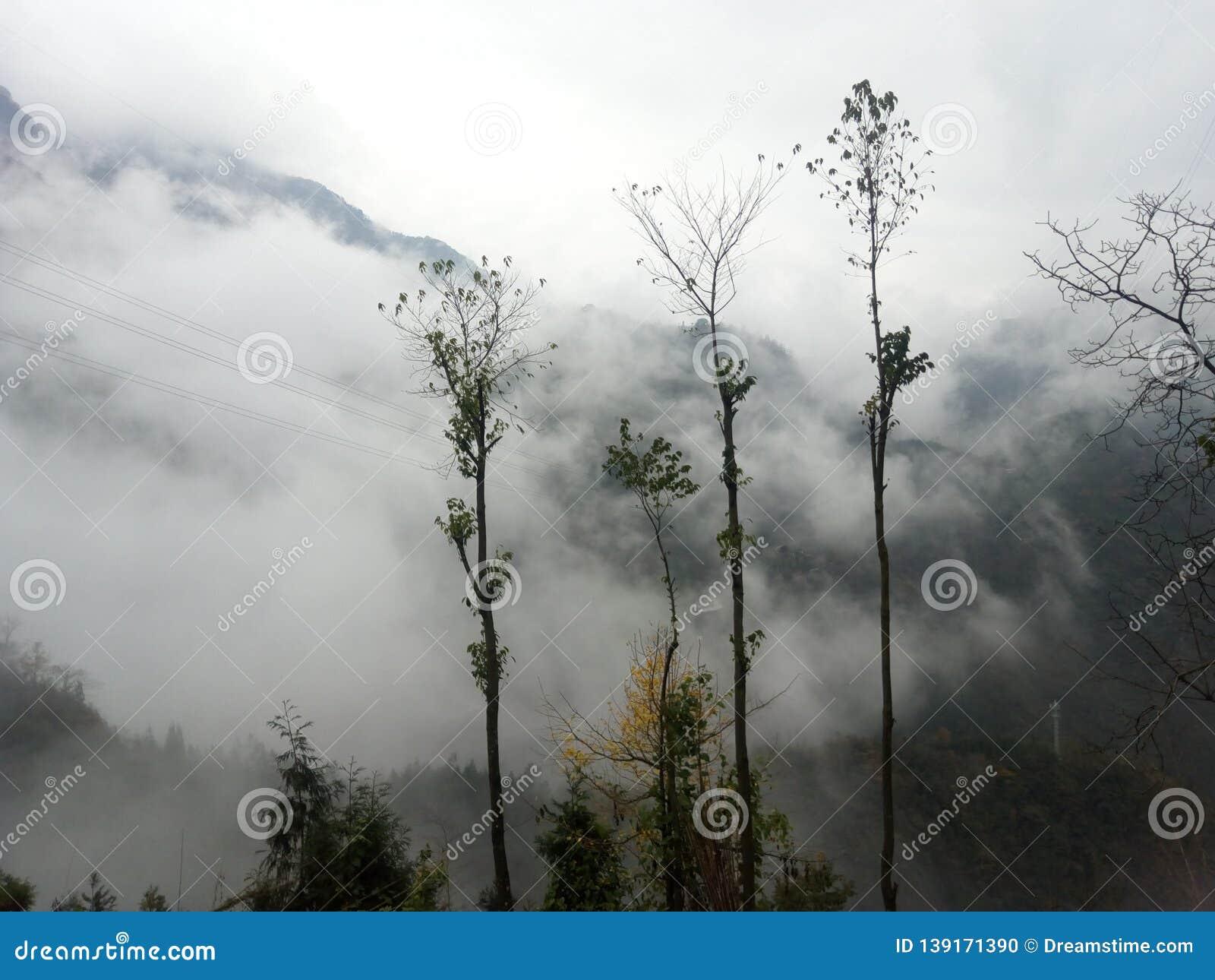 Mountain clouds, clouds like fog