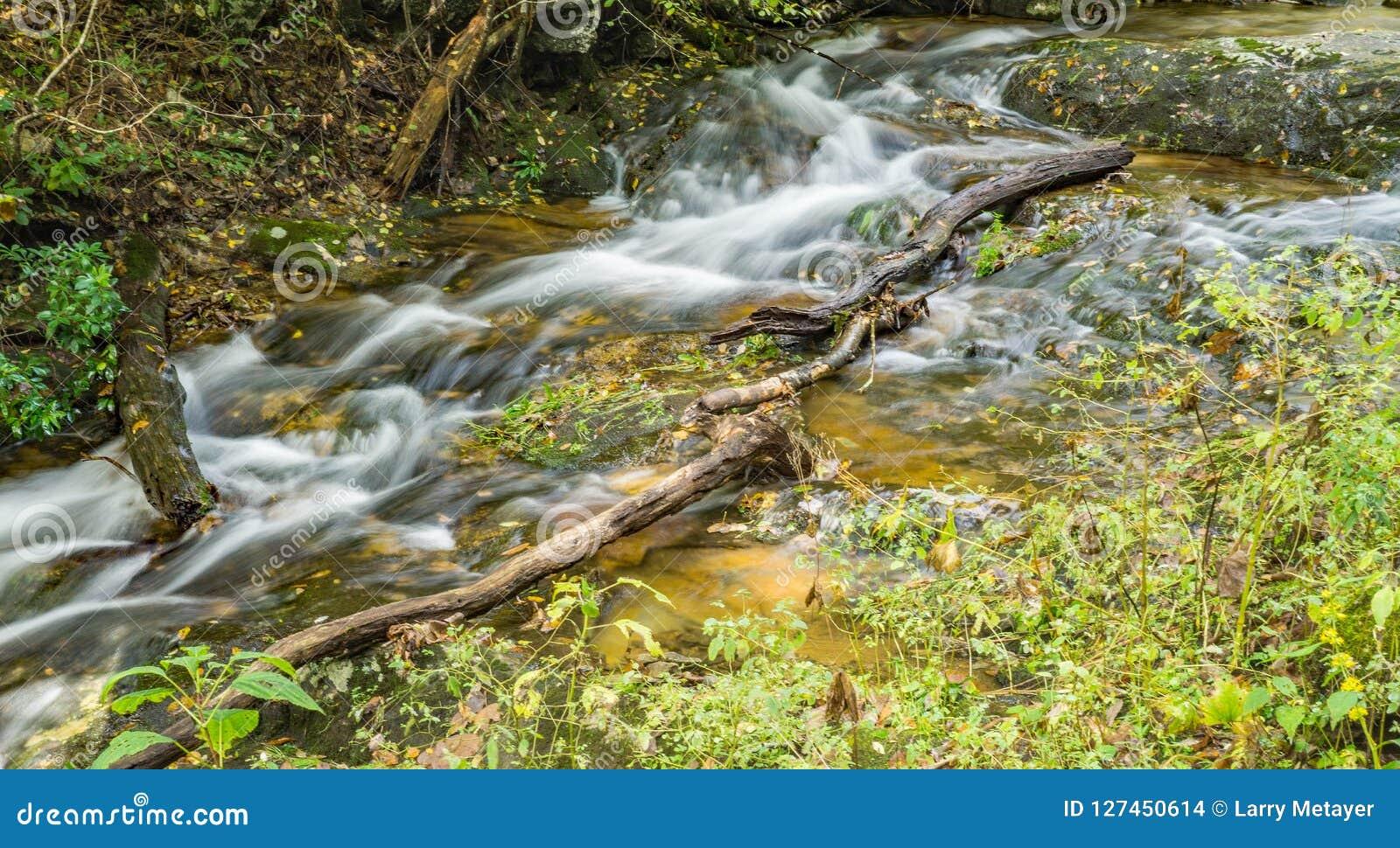 Mountain Creek, Blue Ridge Mountains of Virginia, USA