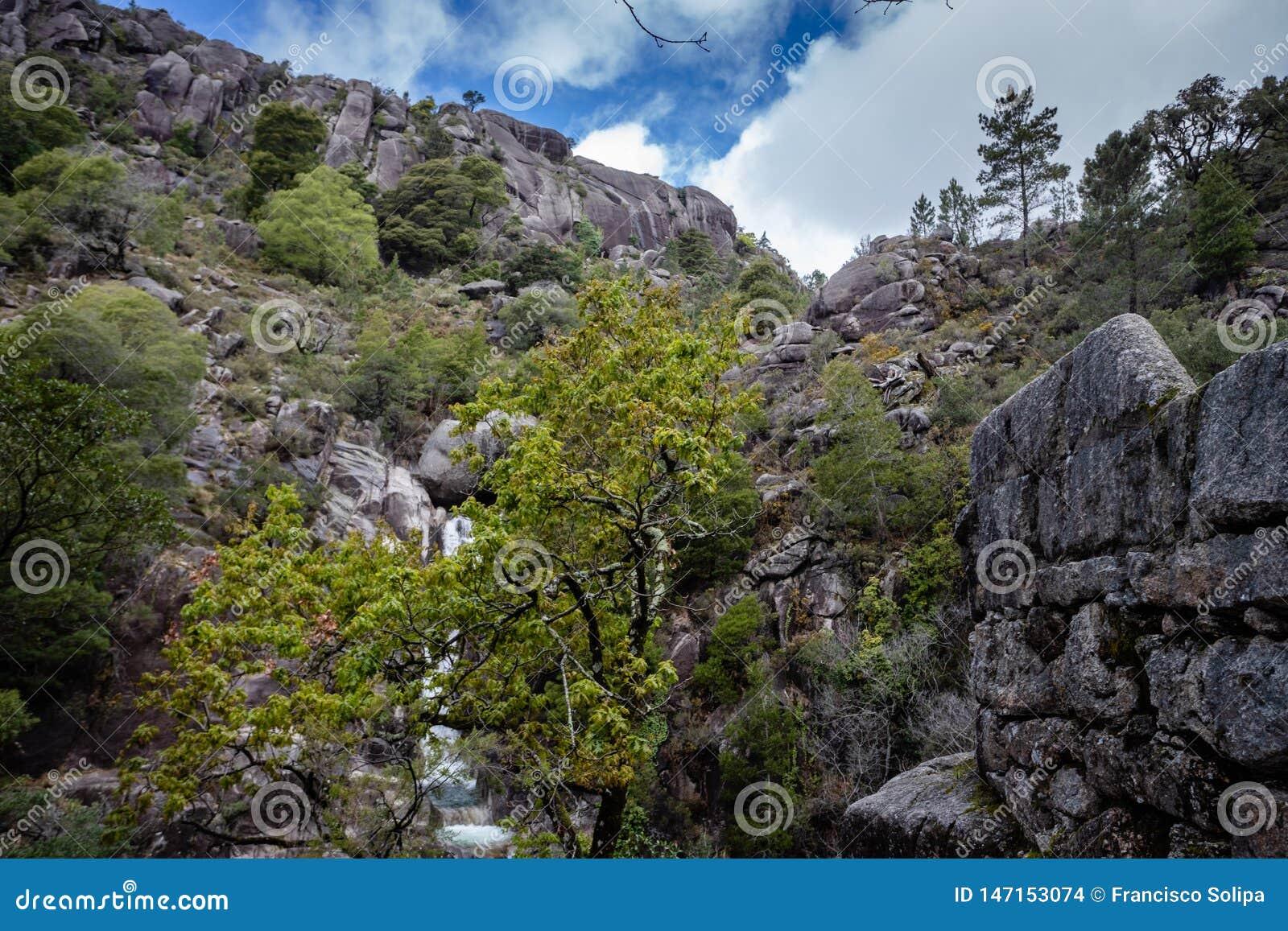 Mountain creek in Peneda Geres, Portugal