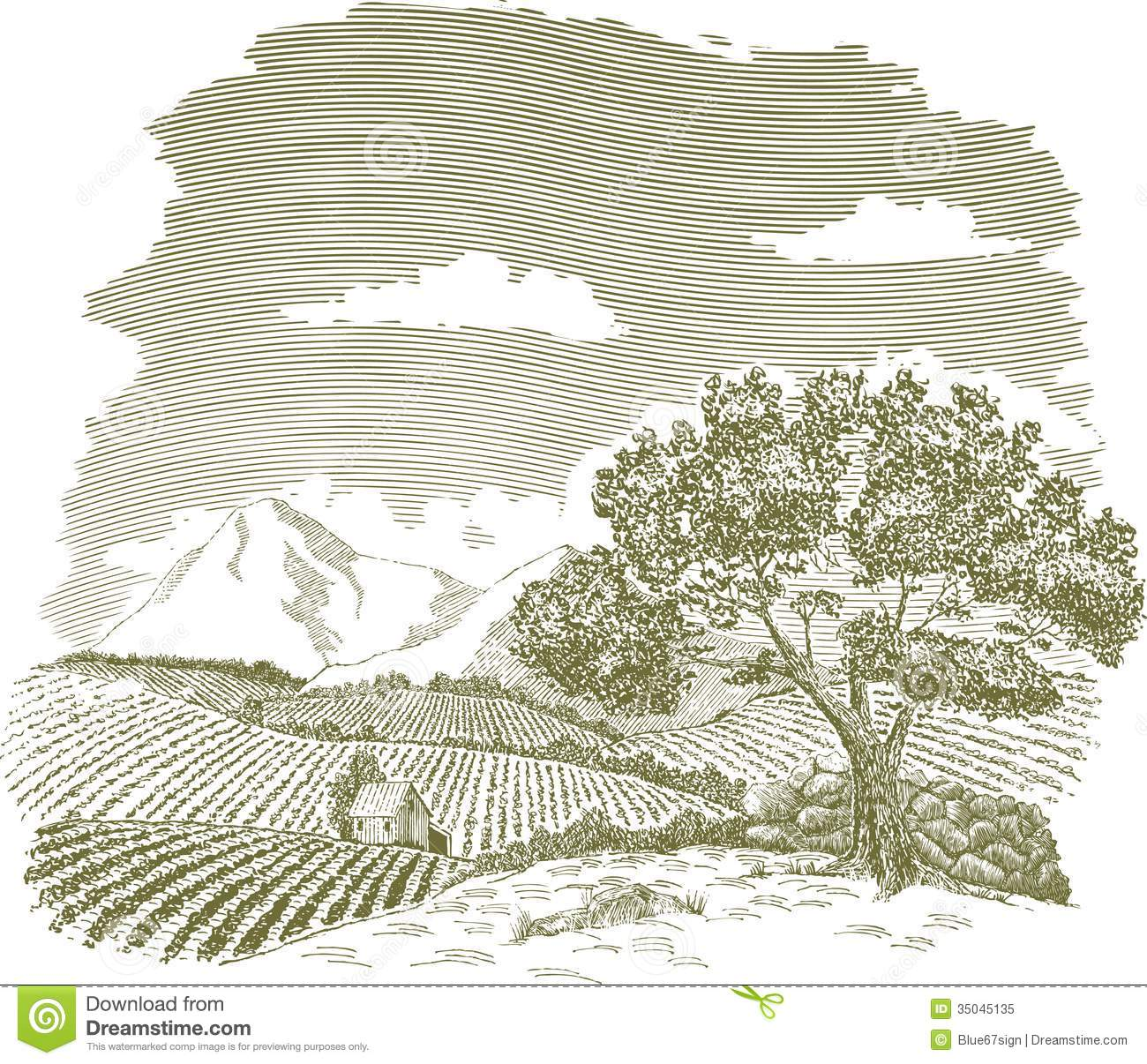 Mountain Farm Field Drawing Stock Vector - Illustration of tree ... for Farm Field Sketch  557ylc