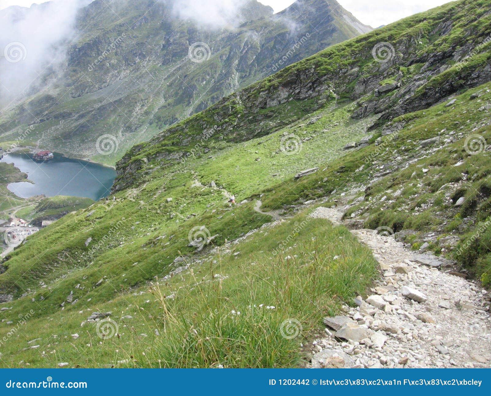 Mountain footpath