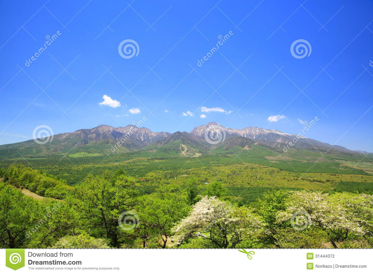 Mountain Of Fresh Green Stock Photography Image 31444372