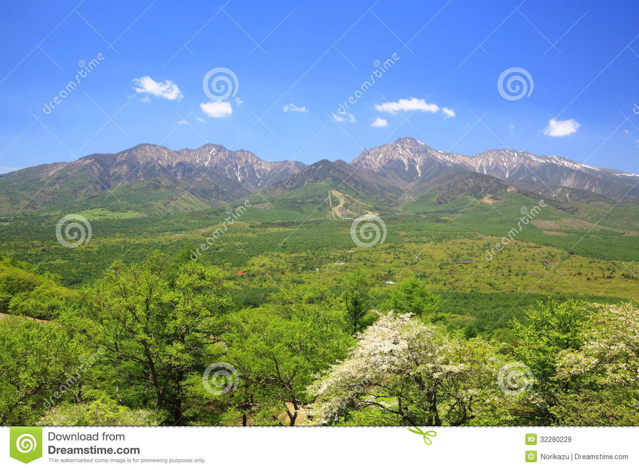 Mountain Of Fresh Green Royalty Free Stock Images Image